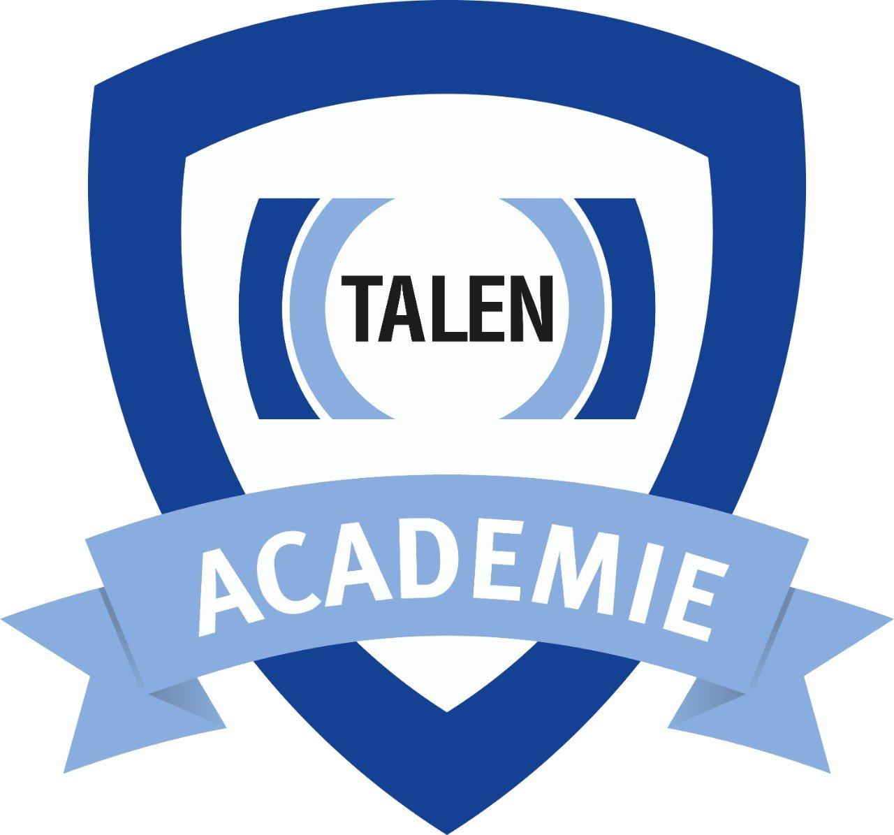 Online MVO verslag Talen - Talen academie